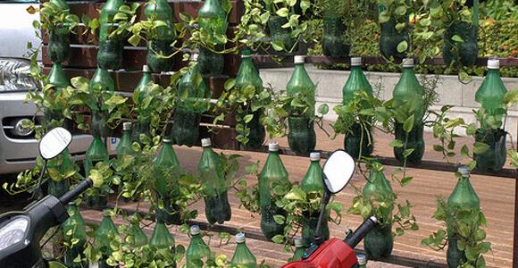 Giardini verticali e bottiglie di plastica - Giardini in bottiglia ...