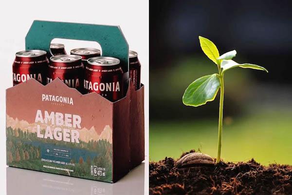 confezione-birra-piantabile